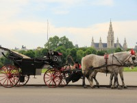 Visit Vienna by horse carriage